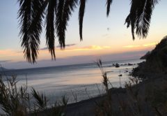 Franzi liebt Kreta