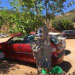 Paleochora: Thrafteros Sandy Beach und Grammeno Beach - Meine Lieblingsstrände in Kretas Westen